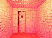 phoca_thumb_m_padded-cell_jenniferrubell_2010_photobyjosephmichaellopez_website-1